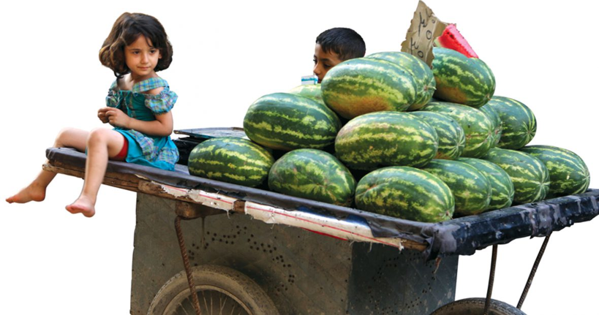 البطيخ حلمًا في زمن حصار المدن…أمنيات الخلاص الصغيرة في الوعر المحاصر