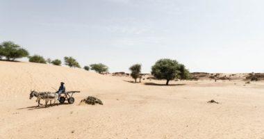حماية البيئة في أوقات النزاعات المسلحة