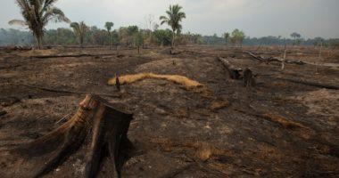 عدد جديد من «الإنساني»: المخزنجي يكتب عن «الحزن البيئي» في ملف عن تغير المناخ والنزاعات المسلحة، ومقالات تحليلية عن الحرب وقواعد القتال