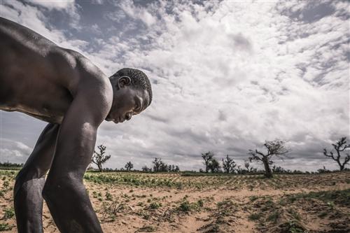 عندما تمطر غبارًا: تقرير عن تغير المناخ والنزاع المسلح