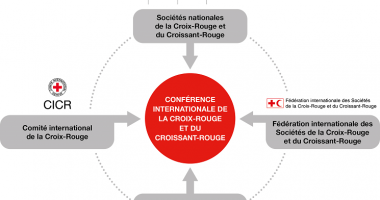 Conférences internationales de la Croix-Rouge et du Croissant-Rouge – Rapports disponibles en ligne