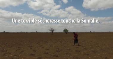 Sécheresse en Somalie : le CICR lance son plus grand programme d'assistance financière