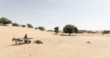 Changement climatique : la Fondation Croix-Rouge française finance des bourses de recherche