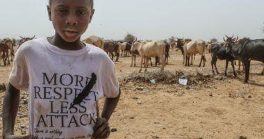 Niger : comment venir en aide aux éleveurs affaiblis par la sécheresse et les conflits?