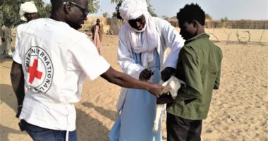 Tchad: 384000 animaux vaccinés contre la peste ovine et la clavelée