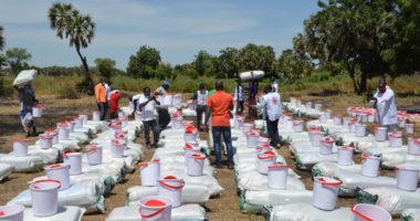 Extrême Nord du Cameroun : aux combats s'ajoutent les inondations