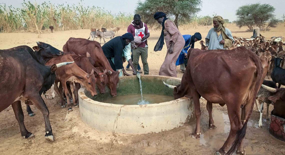 Mali : les défis préoccupants du changement climatique
