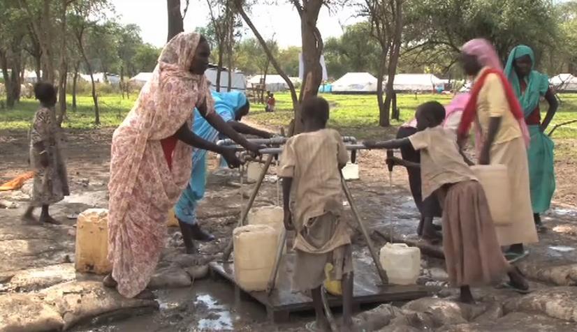 Water and habitat: Responding to emergencies (video)