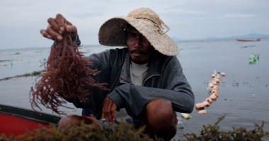 הפיליפינים: שיקום פרנסות בקהילת זמבואנגה