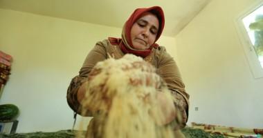 לבנון: בונים מחדש פרנסה בכבוד