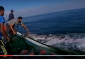 Gaza: Fishermen struggle to make a living (360 video)