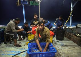 Work at sea: The daily struggle of Gaza's fishermen