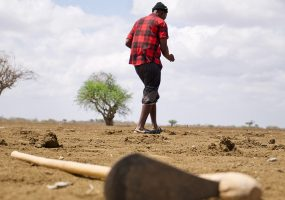 Praying for the rain: the drought strikes and the Somalis are dying of hunger