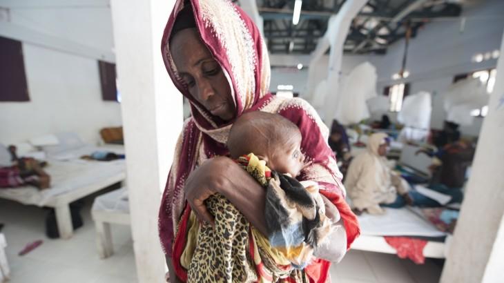 רעב – מניעה ומענה: הצהרת הצלב האדום בפני האומות המאוחדות