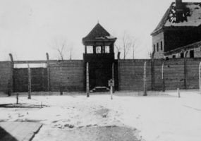 Fiftieth anniversary of the liberation of Auschwitz concentration camp