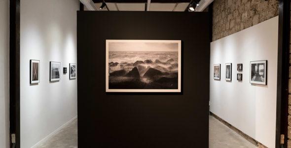 מים כהים/ פתיחה של התערוכה מאת דניאל צ'צ'יק