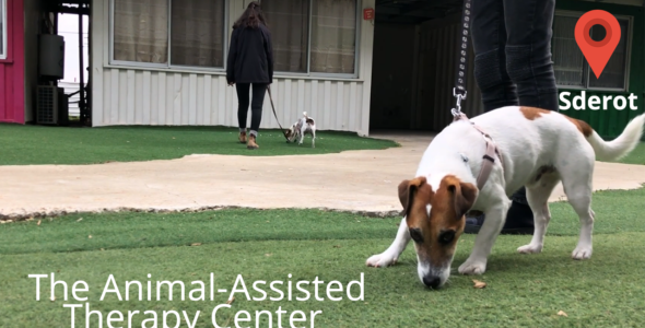 The Animal-Assisted  Therapy Center