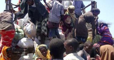 Somalia: Pencarian untuk Bertahan Hidup