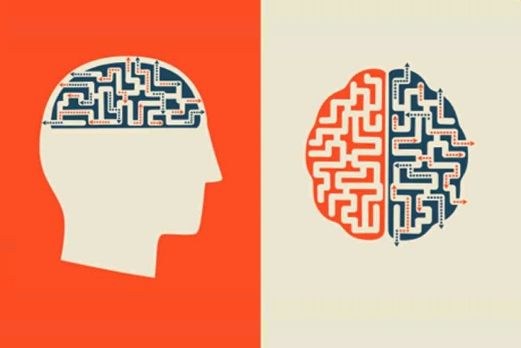 Podcast: What can our brain teach us about behavior change?