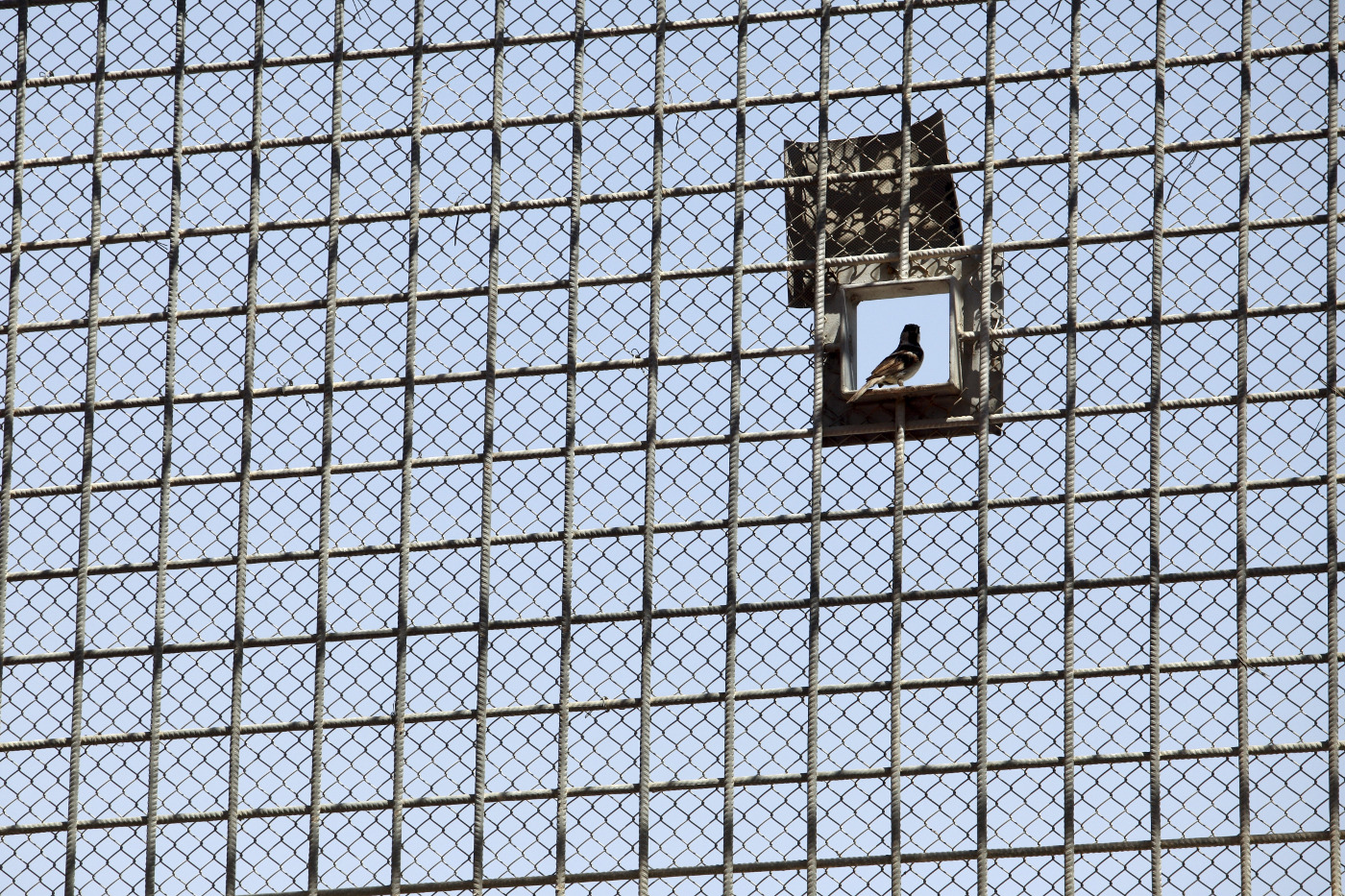 Separated: The humanitarian consequences of solitary
