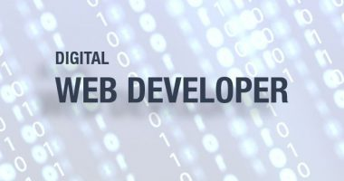 Vacancy Notice for Digital (Web) Developer