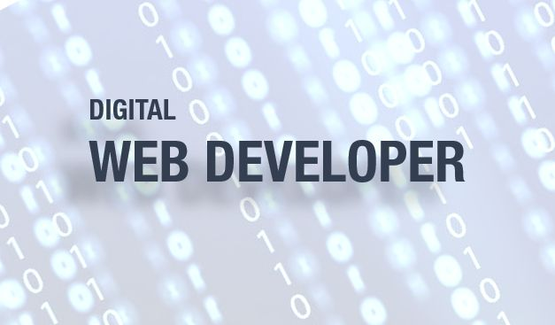 Vacancy Notice for Digital (Web) Developer