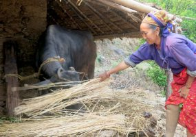 """I Will Come Back… More Confident"" – Marmendu's Story Two Years On from Nepal Earthquake"