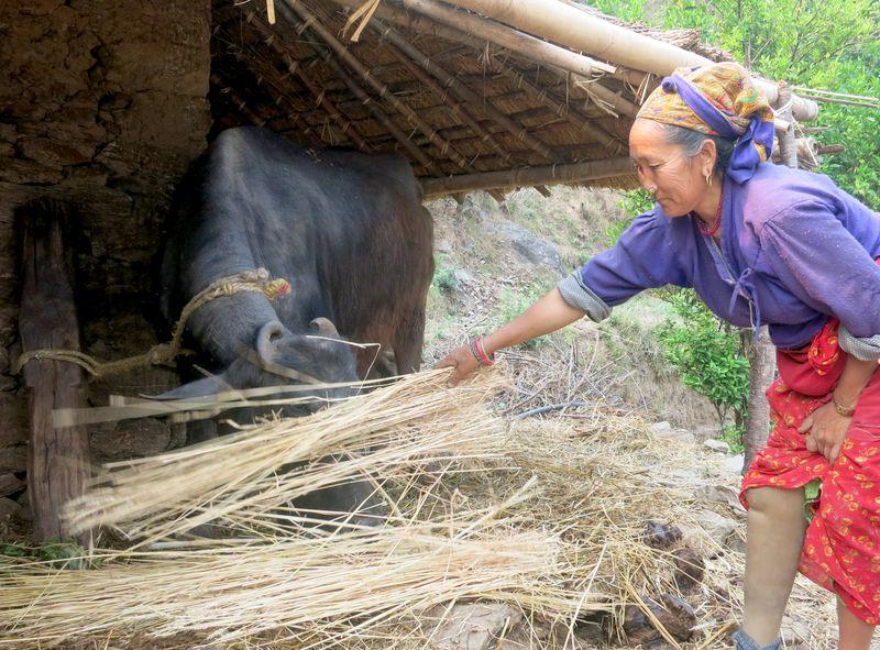 """महाभूकम्पको दुई बर्षः मरमेण्डु भन्छिन् """"म अझ बढी आत्मविश्वास लिएर घर फर्कनेछु"""""""
