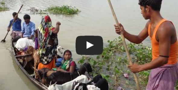 बिहार बाढ़ पीड़ितों के लिए राहत कार्य