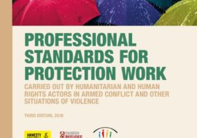 Speech by ICRC President: Launch of the 'Professional Standards for Protection Work'