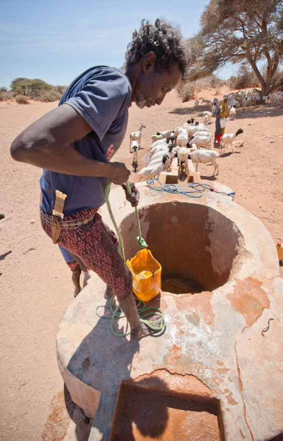 Somalia Drought Emergency Response January To July 2017