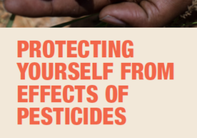Protecting Yourself From Effects of Pesticides